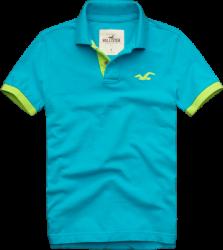 Camisa Polo Hollister Masculina Azul Claro